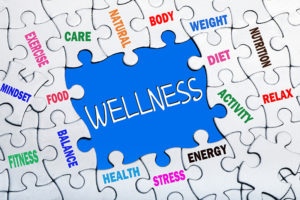 Wellness Information and facts Technician Degree Courses